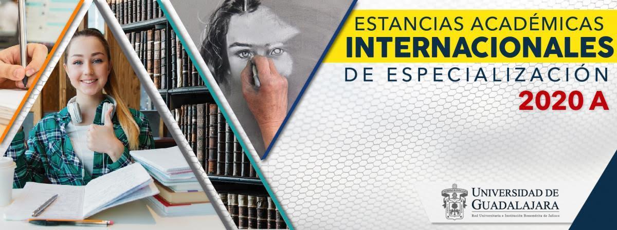 Estancias Académicas Internacionales